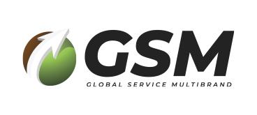 GSM - logo